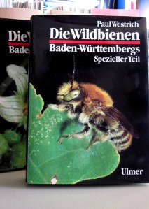 I have been learning about the wild insects that are common in the area where I will be working this summer. I'm still trying to understand some more German!