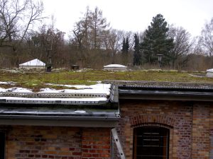 This building was built as a water-pumping station in the 1870s. Today, it has a very diverse green roof!