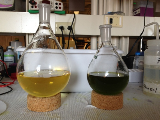 The are two extract of the same sample bu using different solvants. You can see that the colour is different because each solvant extracts specific compounds in the plant!