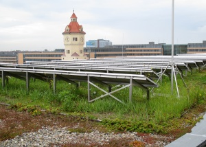 A green roof in Munich also has solar panels which creates places for both sun-loving and shade-loving plants to grow on the same roof.