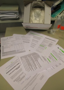 Just some of the paperwork needed to ship insects from Germany to America - what a hassle!