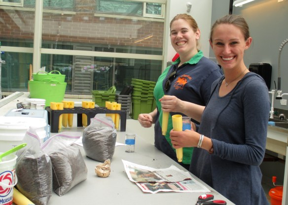 Interns Sarah and Susanna set up an experiment to measure the amount of fungi that are living in the green roof soils.