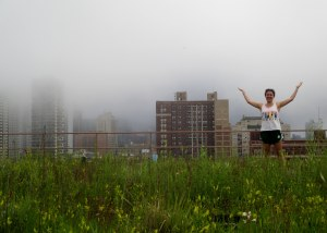 "My intern Monica wonders, ""Why is it so foggy up here and where are all the pollinators?"""